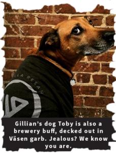 Gillian's dog Toby rocks a Vasen T-shirt.